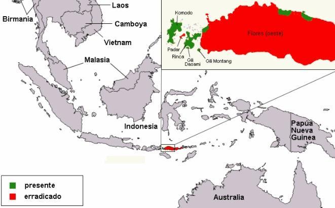 Parque Nacional de Komodo: História, Localização, Flora, Fauna 3