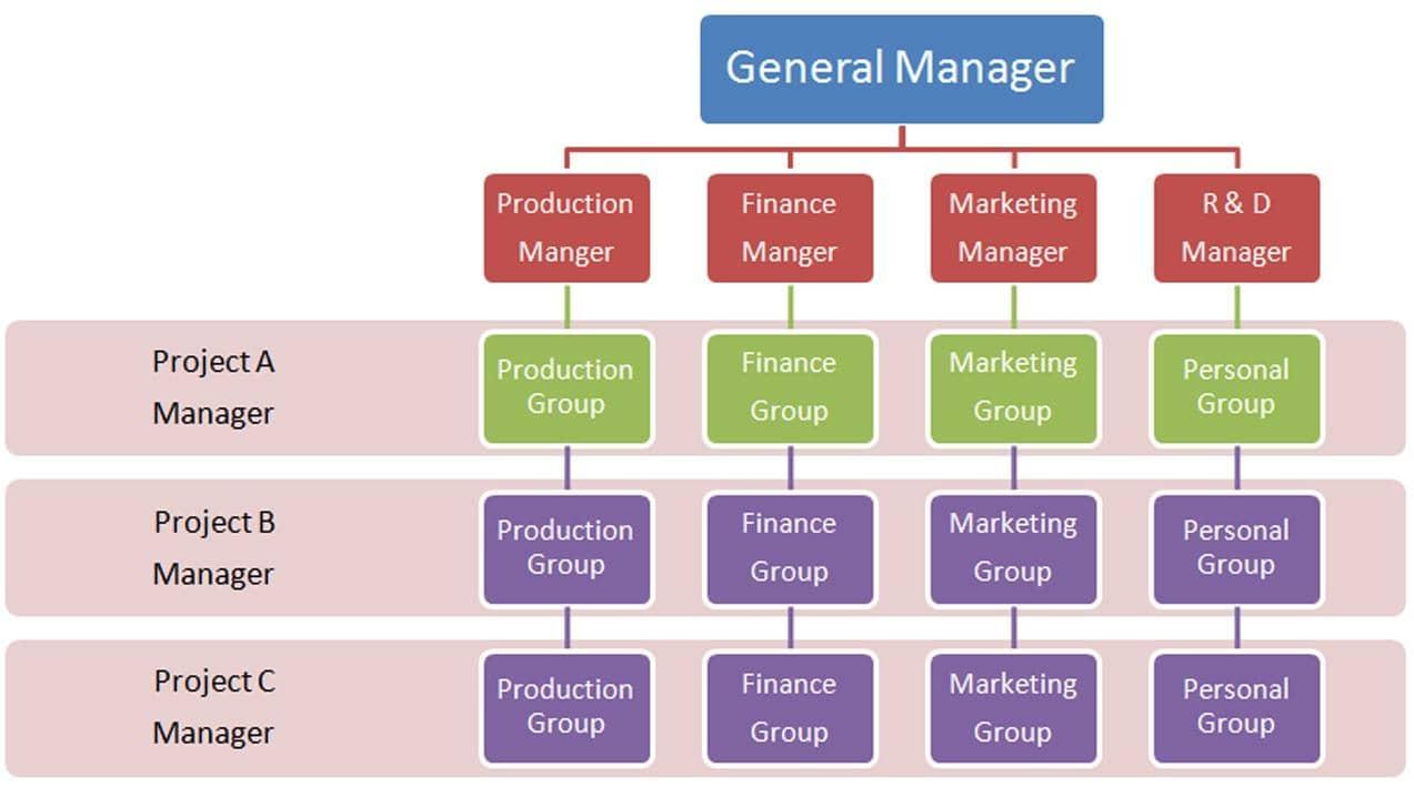 Organização da matriz: recursos mais importantes 37