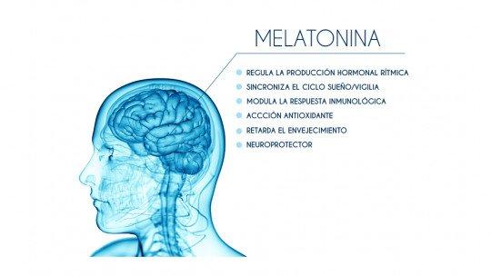 Melatonina: o hormônio que controla o sono e os ritmos sazonais 1