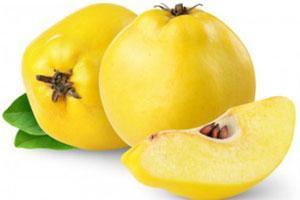 15 Alimentos e produtos do clima temperado 15