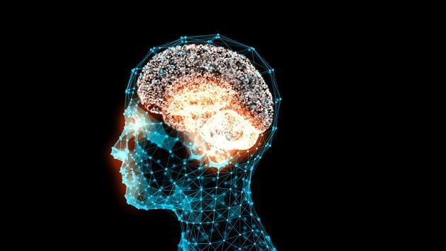 O que é a memória humana? (Psicologia) 7