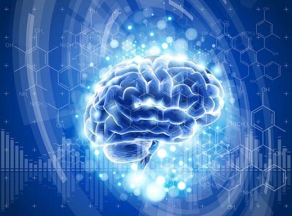 Tipos de memória e suas características (Psicologia) 2