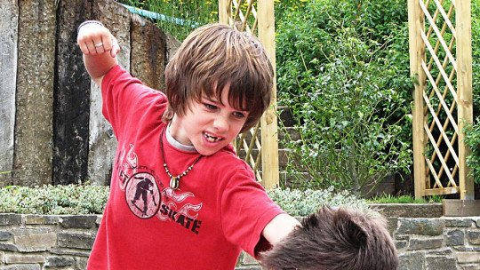 Meu filho bate em outras crianças: o que fazer para consertar isso? 1
