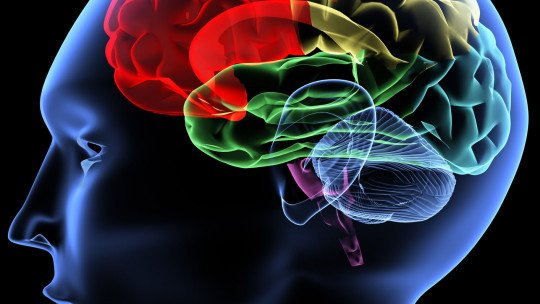8 mitos psicológicos populares que já têm explicação científica 1