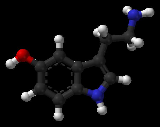 Serotonina: função, produção, estrutura 2