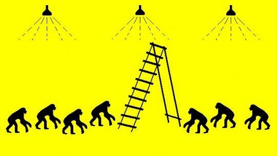O experimento de macacos, bananas e a escada: obedecendo a regras absurdas 1