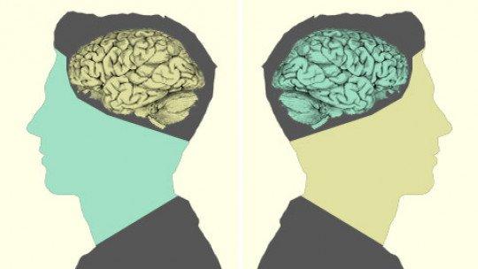 Morfopsicologia: suas características faciais ... indicam sua personalidade? 1