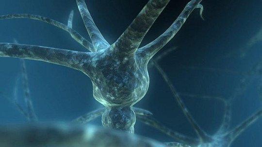 Morte neural: o que é e por que ocorre? 1