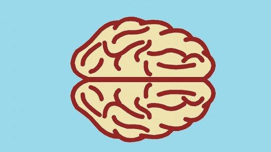 Neurociências: a nova maneira de entender a mente humana 1