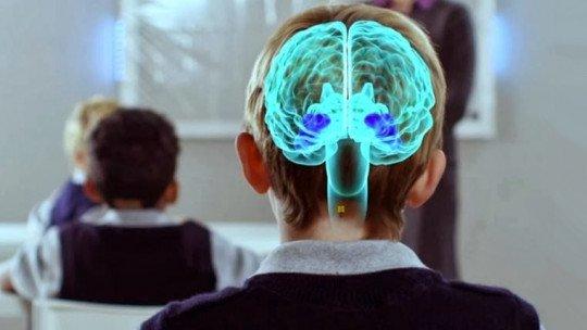 Neuroeducação: aprendizagem baseada na neurociência 1