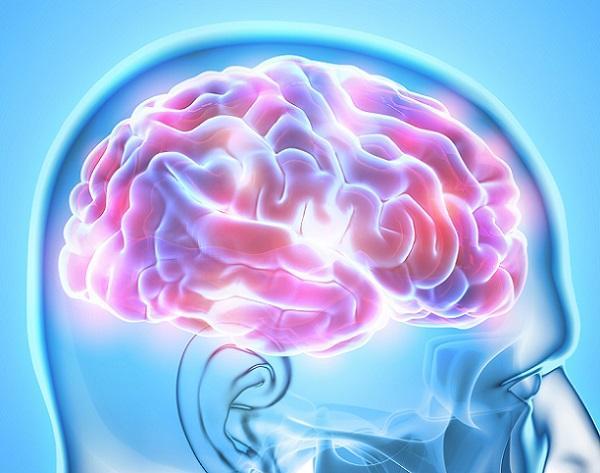 Memória semântica: características, funções e exemplos 2