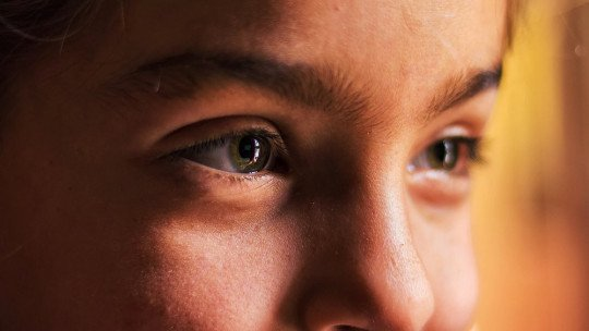 Por que não subestimar a inteligência emocional 18