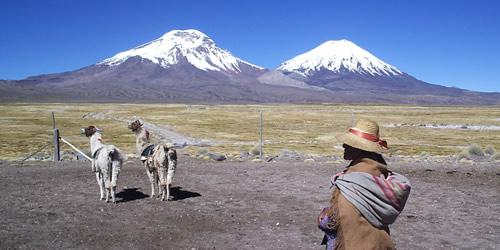 Zona Norte do Chile: Clima, Flora, Fauna e Recursos 1