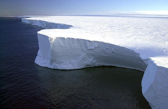 Gelo perpétuo: características, clima, flora, fauna 4