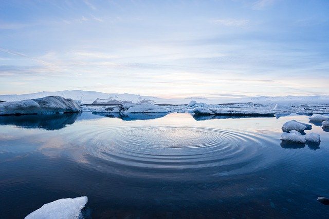 Gelo perpétuo: características, clima, flora, fauna 2