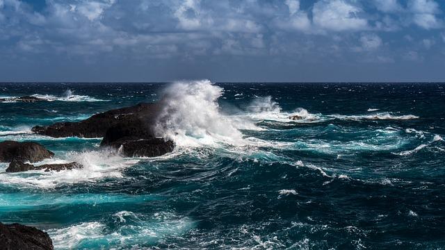 Oceano Atlântico: origem geológica, características, flora e fauna 1