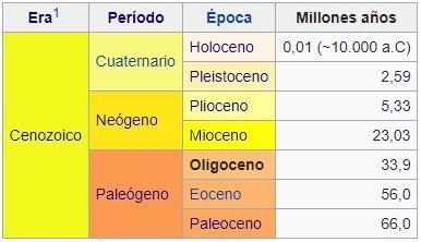 Oligoceno: características, subdivisões, geologia e fauna 3