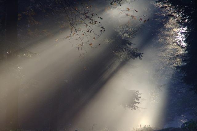 Qual é a teoria teológica da origem da vida? 1