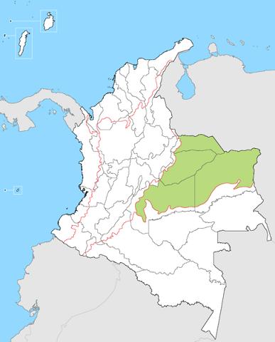 Região Orinoquía: Localização, Características, Clima 2