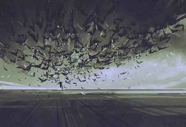 Ornitofobia (fobia de aves): sintomas, causas, tratamentos 1