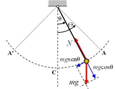 Movimento do pêndulo: pêndulo simples, harmônico simples 5
