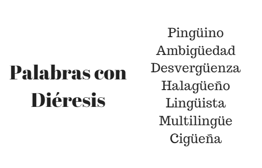 500 Palavras com Diéresis em Espanhol 1