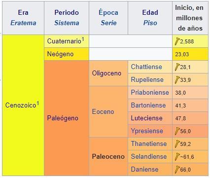 Paleoceno: características, subdivisões, flora e fauna 3