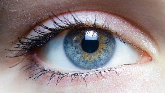 As 11 partes do olho e suas funções 1