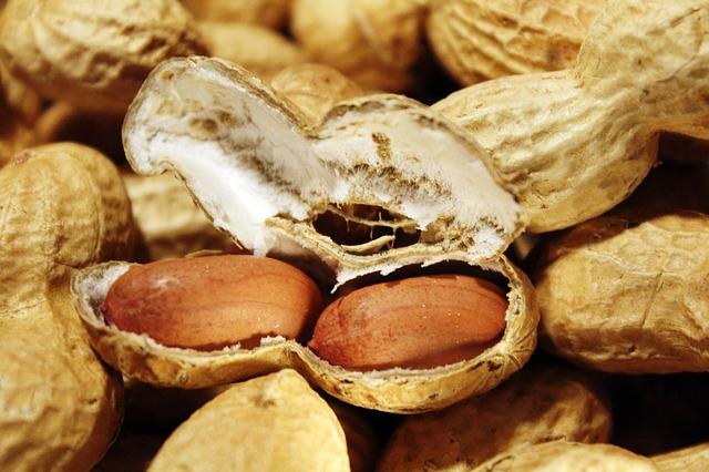 Amendoim: características, habitat, propriedades, cultivo 4