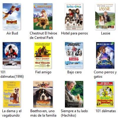 Os 50 melhores filmes para cães (para crianças e adultos)