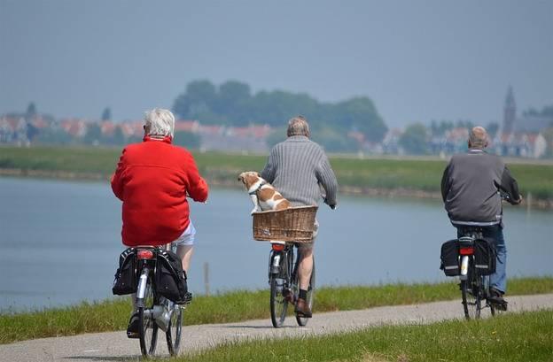 Atividades físicas para idosos 52