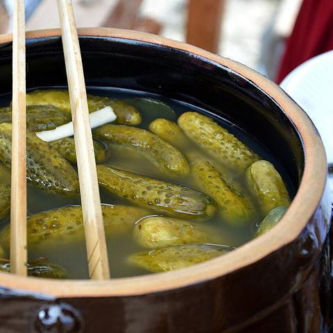 O que é fermentação láctica? Processo e Produtos 41