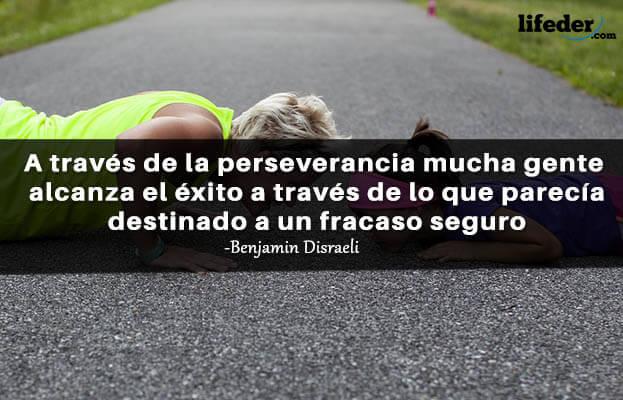 As 100 melhores frases de perseverança 12