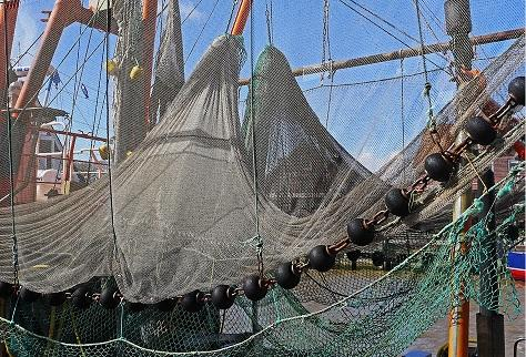 Tecnologias Agrícolas e da Pesca: Recursos 2