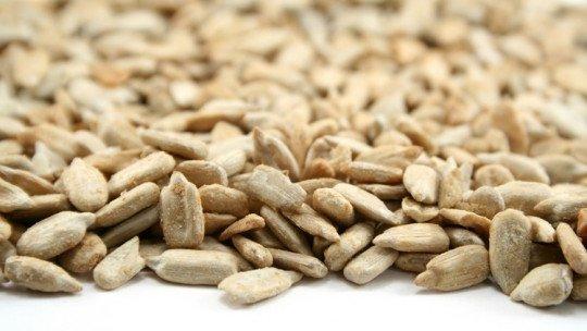 11 benefícios e propriedades das sementes de girassol 1