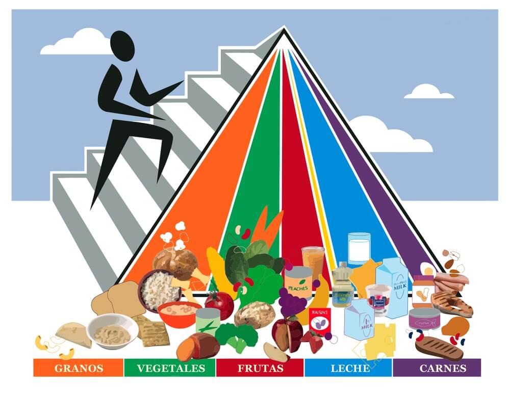 Pirâmide alimentar: como ter uma dieta correta? 1