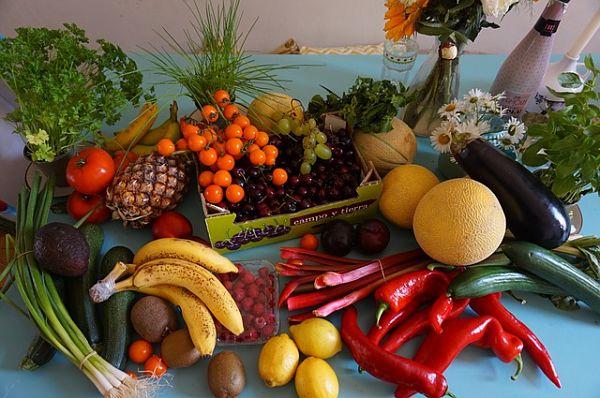 30 plantas alimentares e seus benefícios para a saúde 1