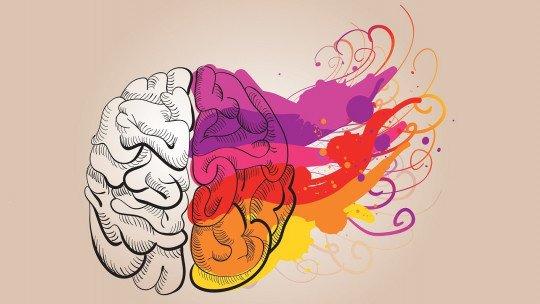 As cinco inteligências do ser humano 3