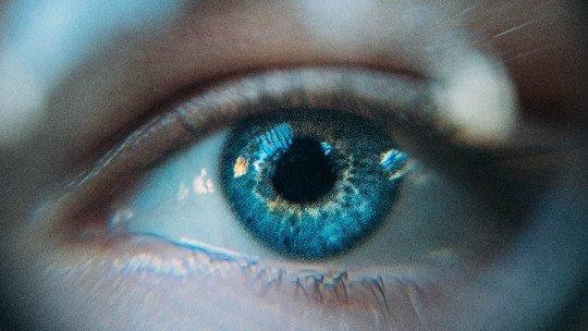 As 35 perguntas sobre psicologia que você deve poder responder 1
