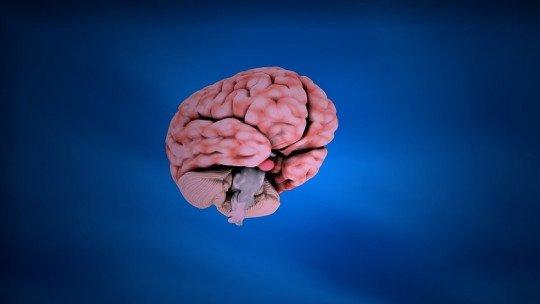 Processos cognitivos: o que exatamente são e por que importam na psicologia? 1