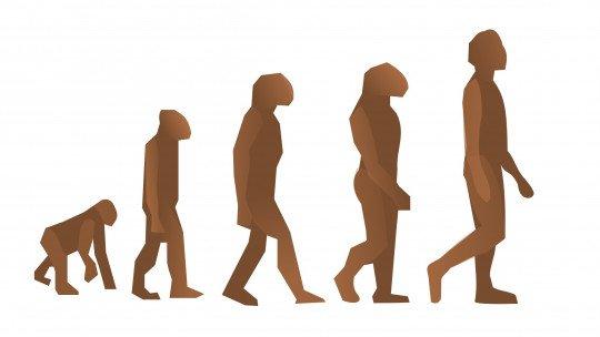 Diferenças entre Psicologia Evolutiva e Psicologia Evolutiva 1