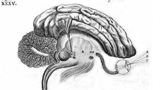 O que é psicologia fisiológica? 1