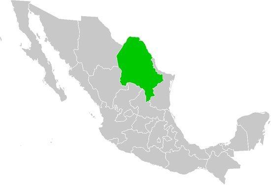 O que são os grupos étnicos de Coahuila?