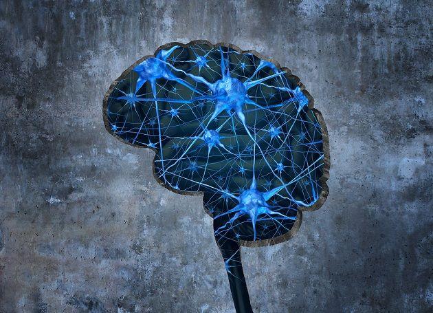 O que é a memória humana? (Psicologia) 1