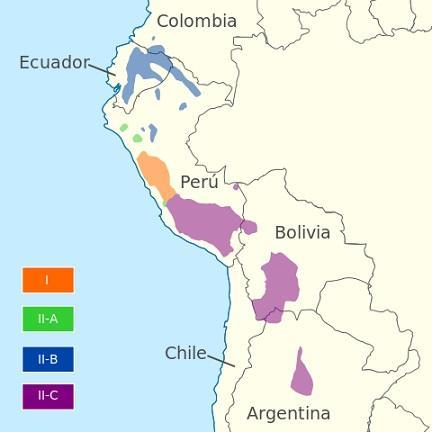 As 8 famílias de idiomas mais importantes da Colômbia 4