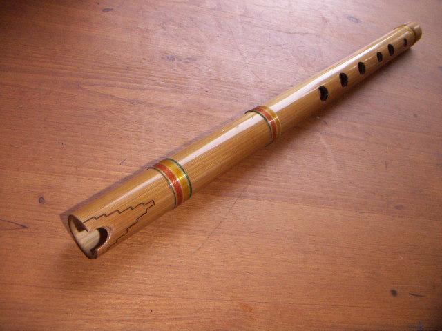 15 instrumentos musicais da Argentina (folclórica e nativa) 4
