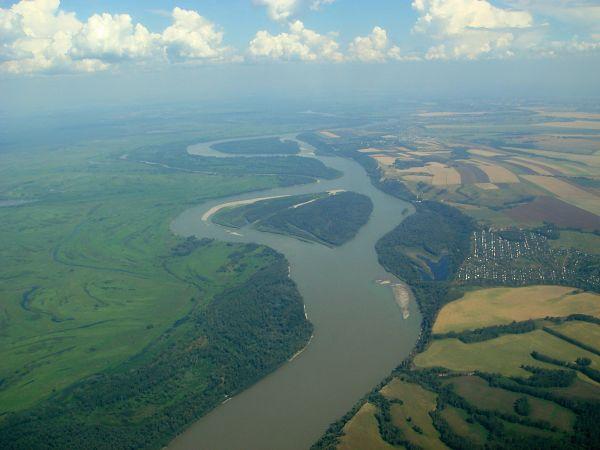 Rio Obi: Onde Está, Características, Fauna e Flora 7