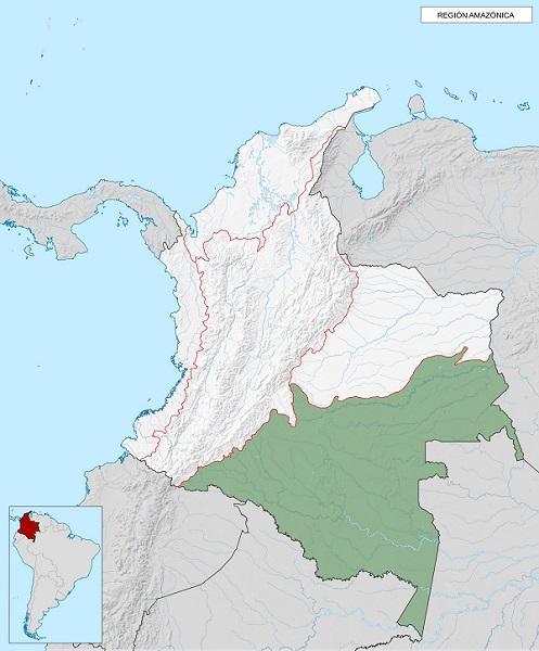 Região Amazônica: características, localização, clima, hidrografia 10
