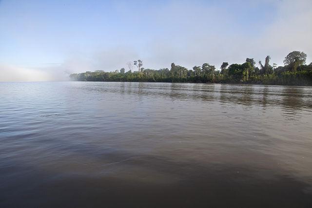 Região Amazônica do Equador: características, províncias, culturas 1