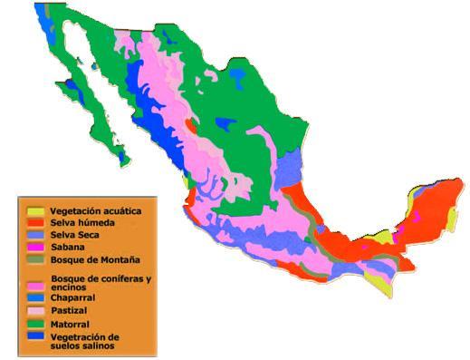 Quais são as regiões naturais do México? 1